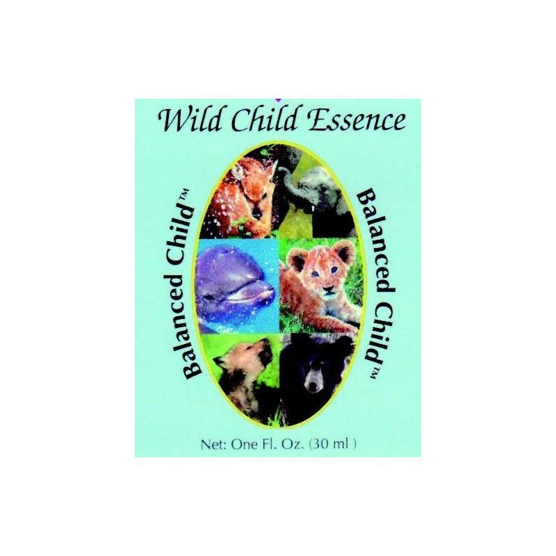 Formula Composta Wild Earth - Balanced