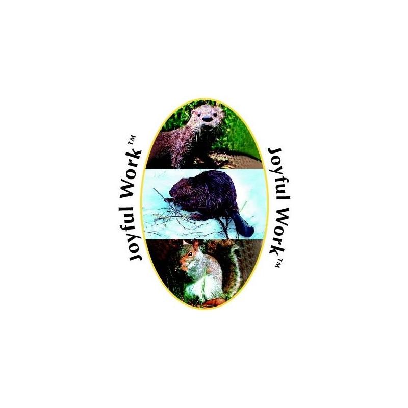 Formula Composta Wild Earth - Joyful