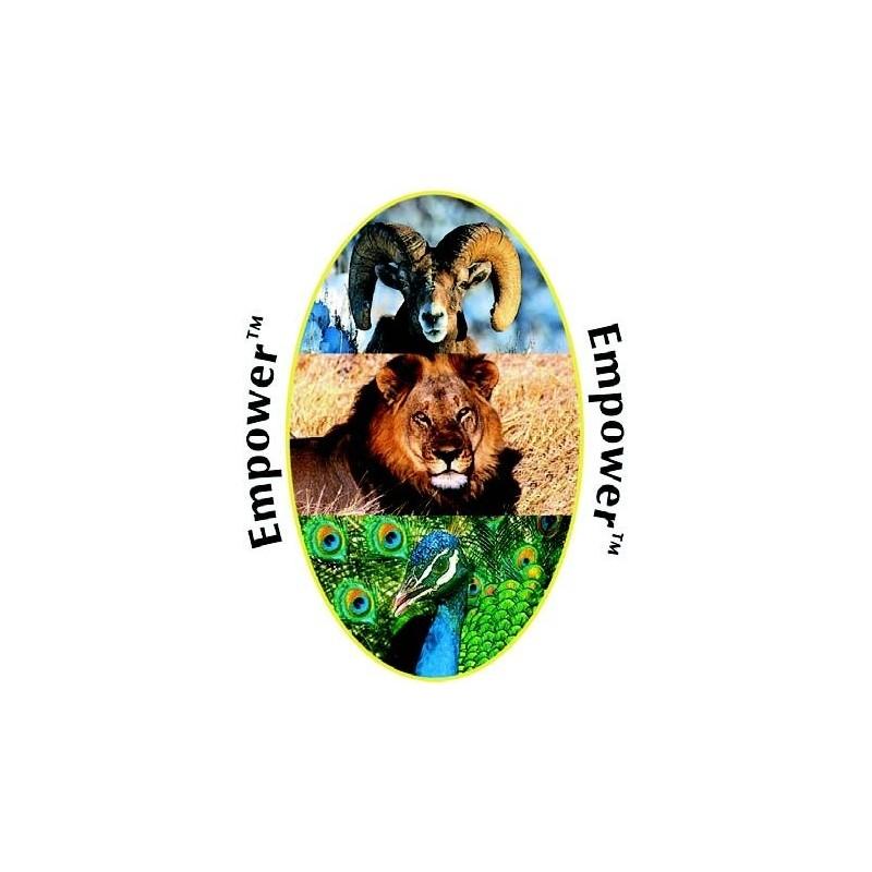 Formula Composta Animali Wild Earth -