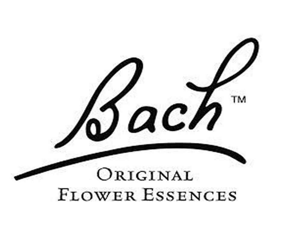 Bach Center
