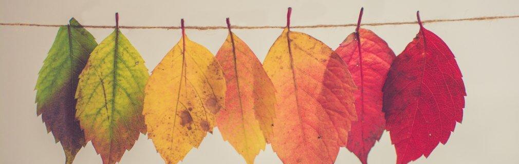 malesseri autunno