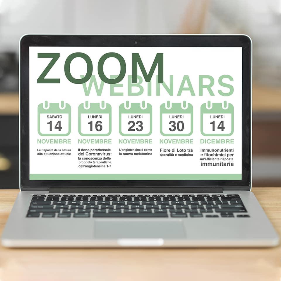 Webinar Zoom