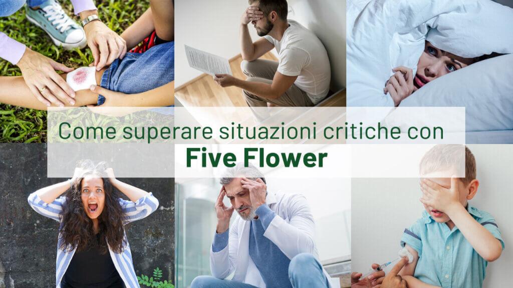 five flower