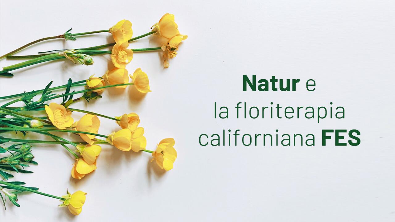 floriterapia californiana